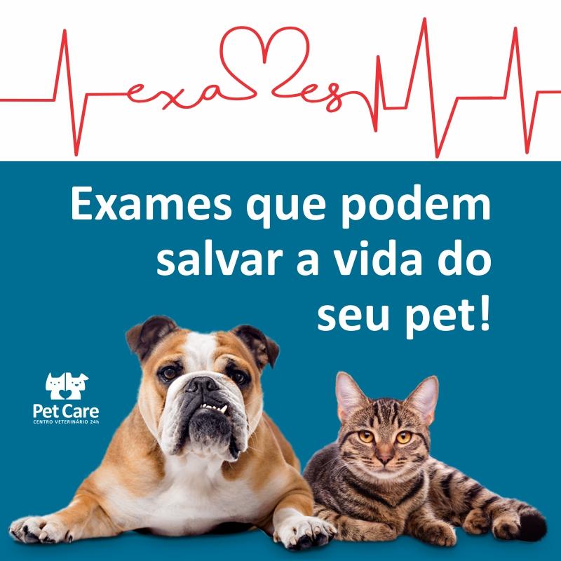 post instagram petcare exames - 12 Exames que podem salvar a vida do seu pet